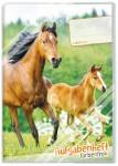 Aufgabenheft Farbenfroh A5 [Pferde]