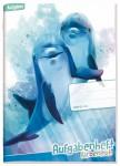 Aufgabenheft Farbenfroh mini A6  [Delfine]