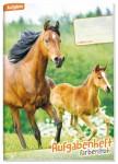 Aufgabenheft Farbenfroh mini A6  [Pferde]